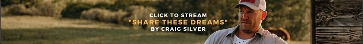 """stream """"Share These Dreams"""" By Craig Silver"""